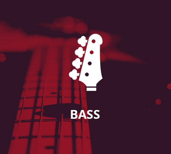 bass-picture-link